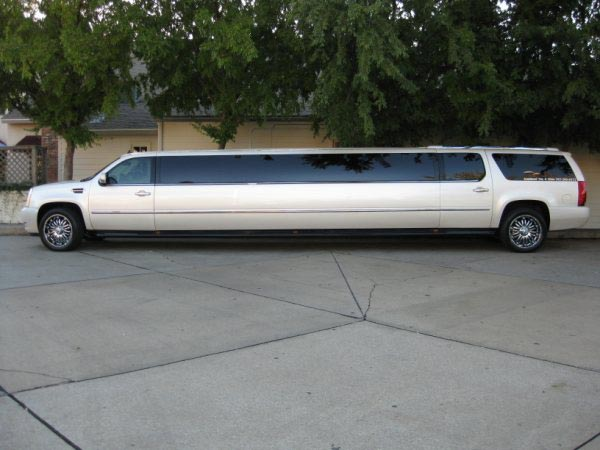Free Limo at Paw Paw's Bridal